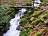 cascade-andlau-(1)