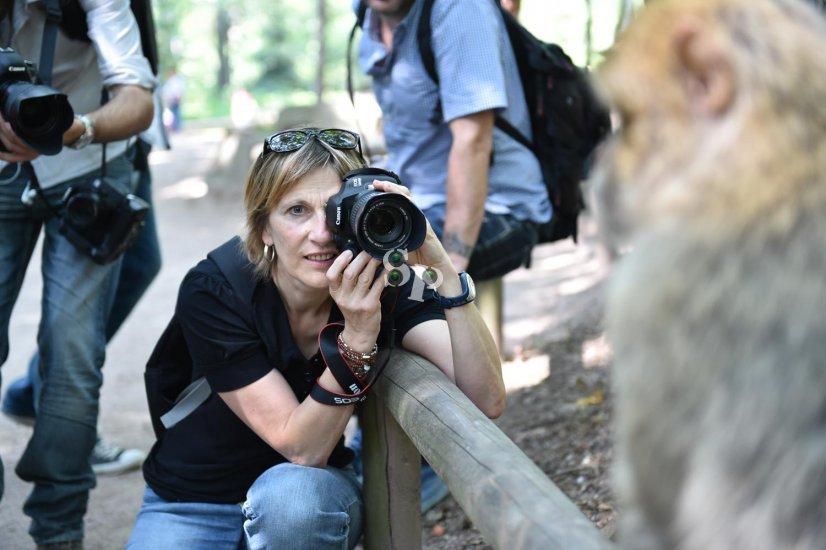 cours photo animalière en Alsace
