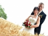 mariage-(114).jpg