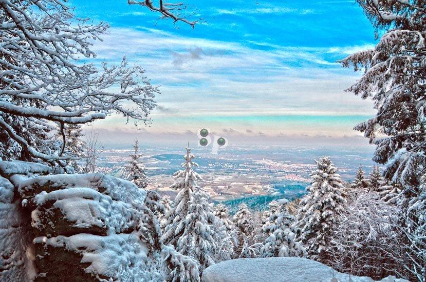 Plaine d'Alsace sous la neige