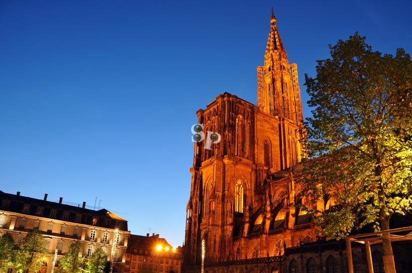 Photo de nuit : Cathédrale de Strasbourg