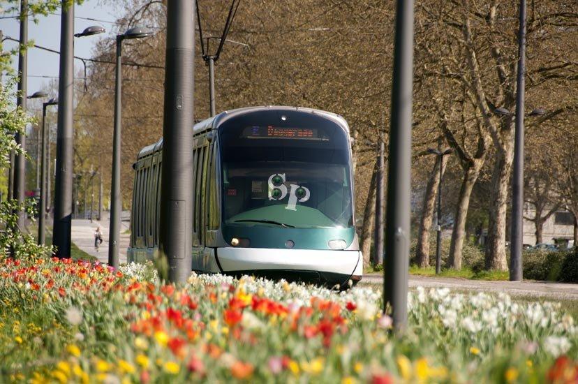 Le printemps de retour strasbourg - Le printemps strasbourg ...