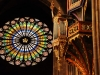 rosace-orgue-cathedrale-strasbourg-(8)