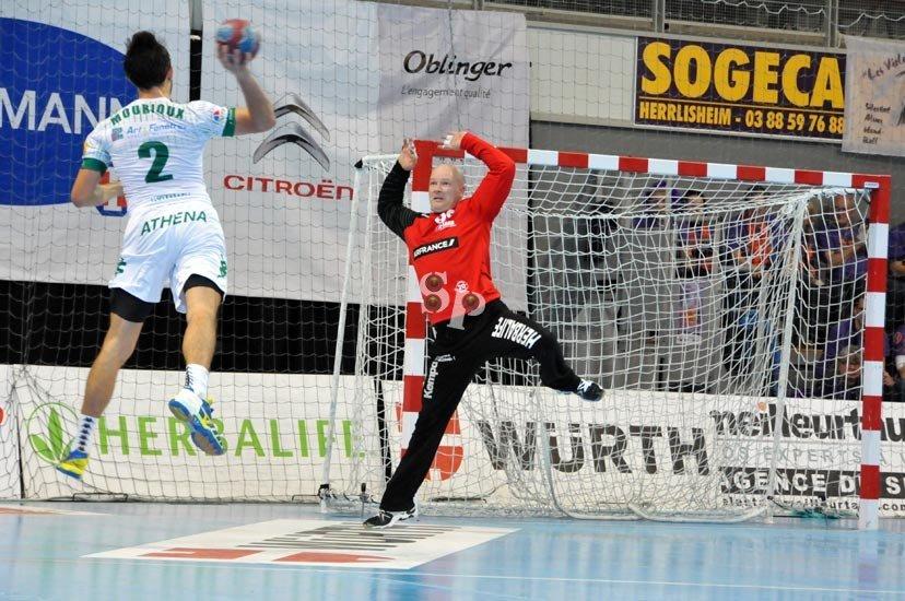 Sélestat Alsace Handball Laszlo Fulop