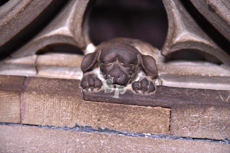 Le chien de Geiler, Cathédrale de Strasbourg
