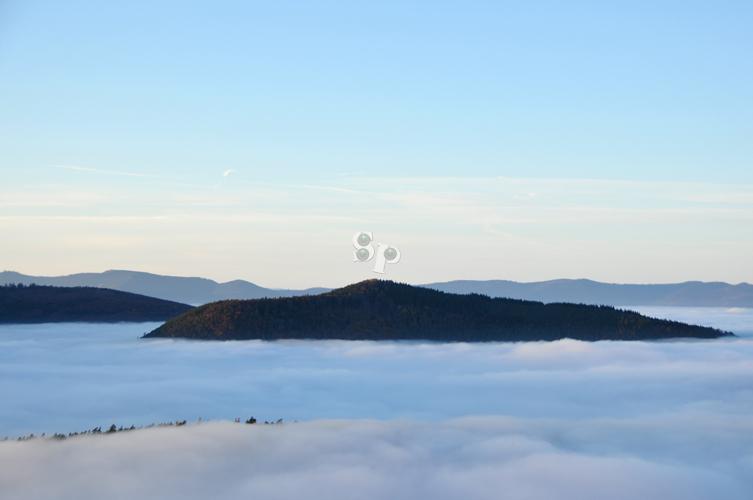 plaine d'alsace sous le brouillard