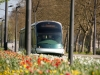 tramway-(59)
