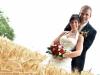 mariage-(114)