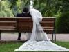 mariage-basem-kasem-(78)
