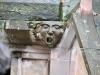 gargouilles-cathedrale-strasbourg-(29)