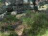 mur-paien-(12)