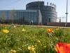 parlement-europeen-(129)