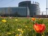 parlement-europeen-(130)