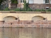 ponts-couverts-(131)
