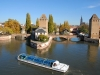 ponts-couverts-(80)